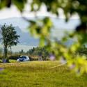 "Roman Kresta jel letos ""Barumku"" naposledy. Barum Czech Rally Zlín 2013"