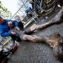 Yannick Peeters po dojezdu doslova padl vyčerpáním, ME v cyklokrosu 2013 (her)
