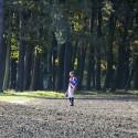 123. Velká pardubická steeplechase, sám ztracen v lese, Freddie Mitchell byl vyklopen Cantridarou (syn)