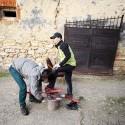 Přiizolovávání lyží k botám. Turman 2012 (syn)