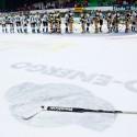 Radostí pohozená hokejka Petra Fraňka