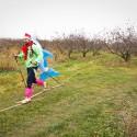 Běžec na lyžích s delfínem na zádech v jabloňovém sadě  (can)